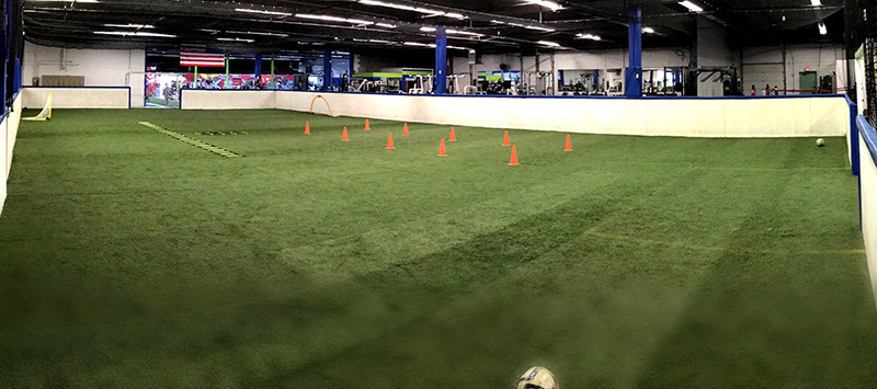 Arena Field